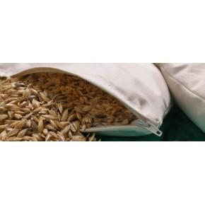 Guanciale baby in pula miglio/farro cotone lana o kapok